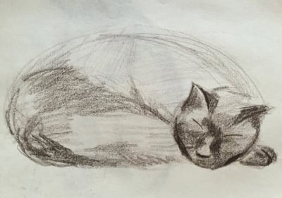 My first, childhood attempt at drawing my cat - also named Charlie.