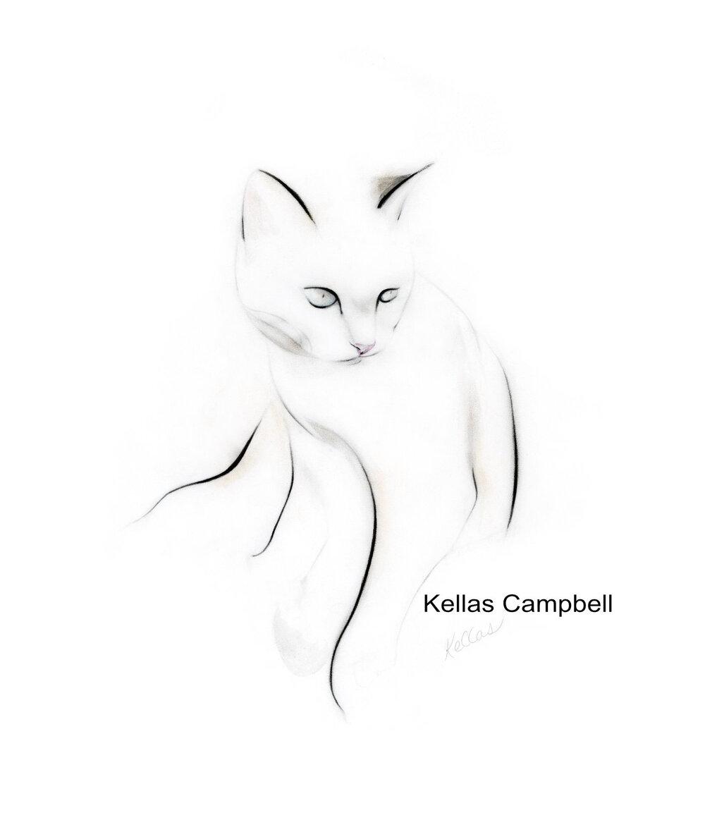 Kawaii Anime Kitten Sleeping Cats Drawings Www Galleryneed Com