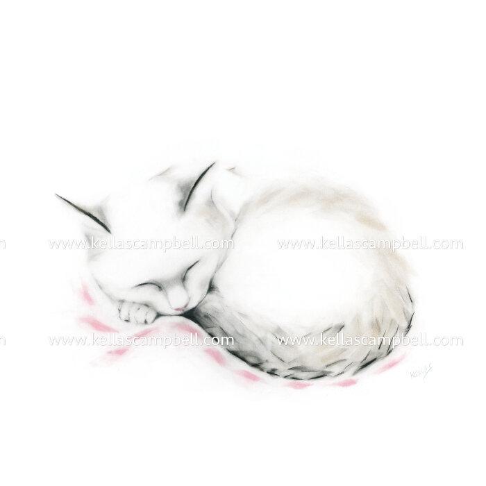 Cat Sleeping on Pink Afghan