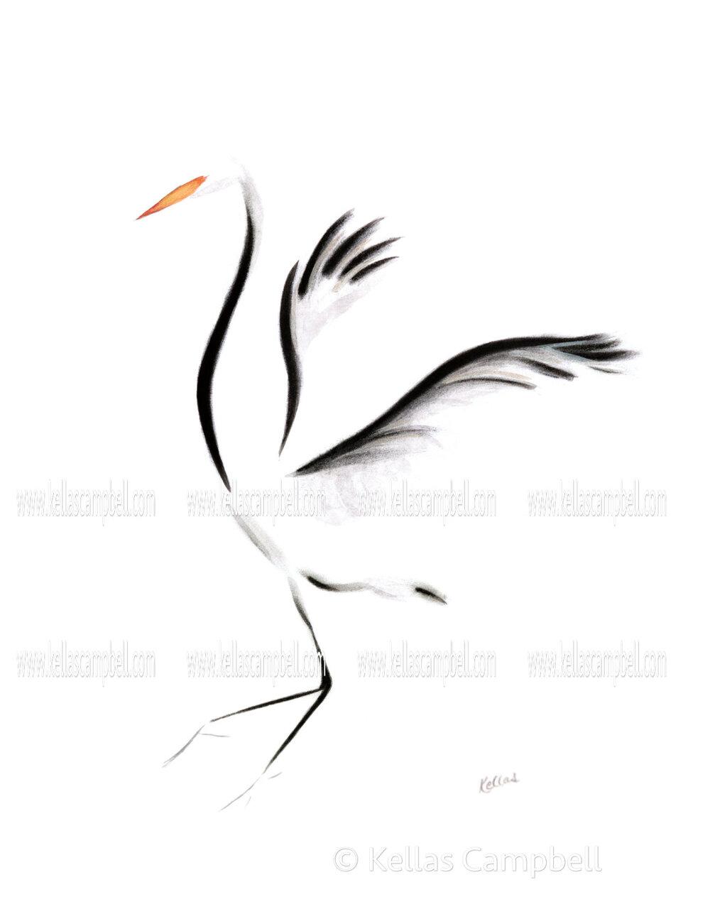 crane_af.jpg