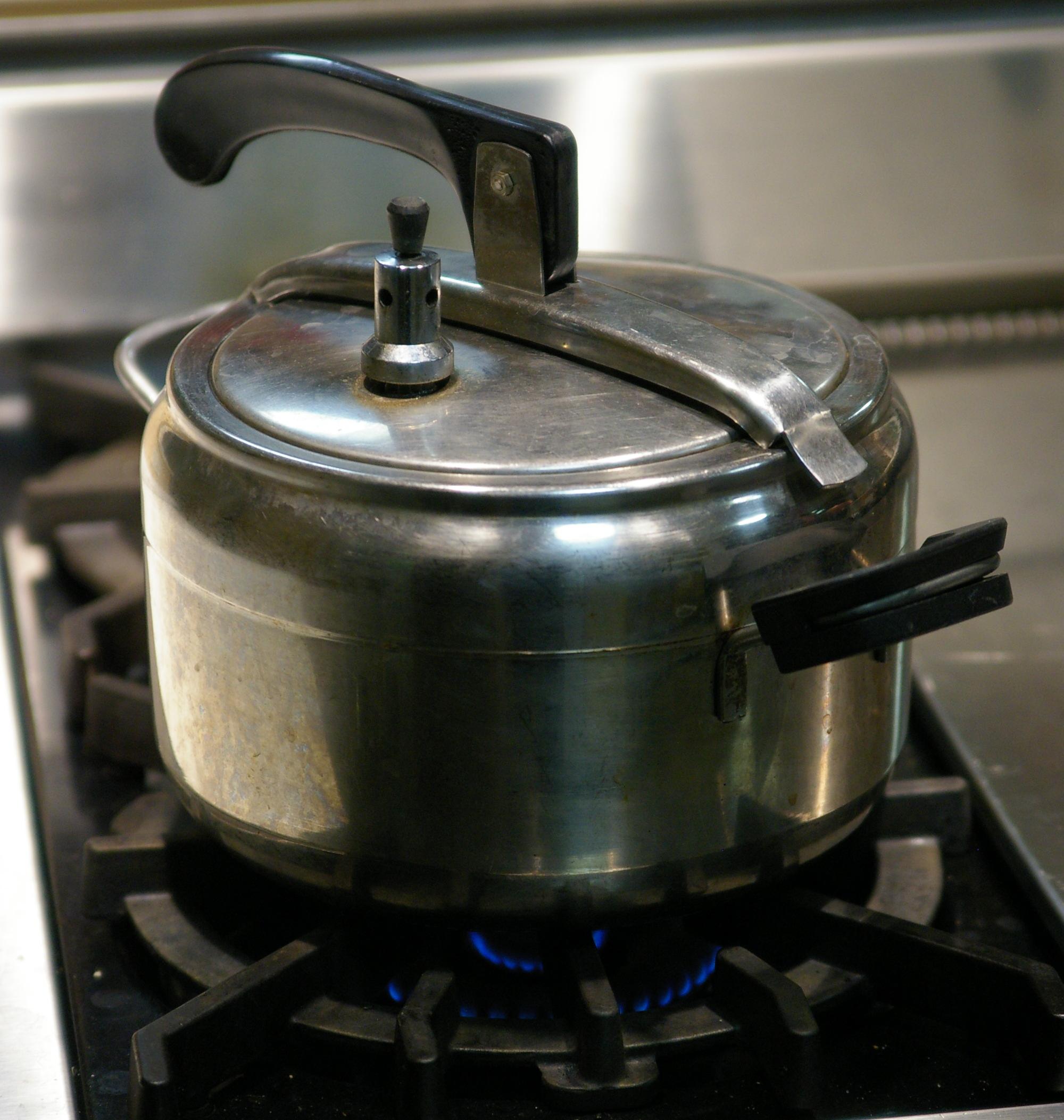 Pressure_cooker_oval_lid