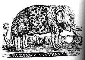 Fisher_Elephant