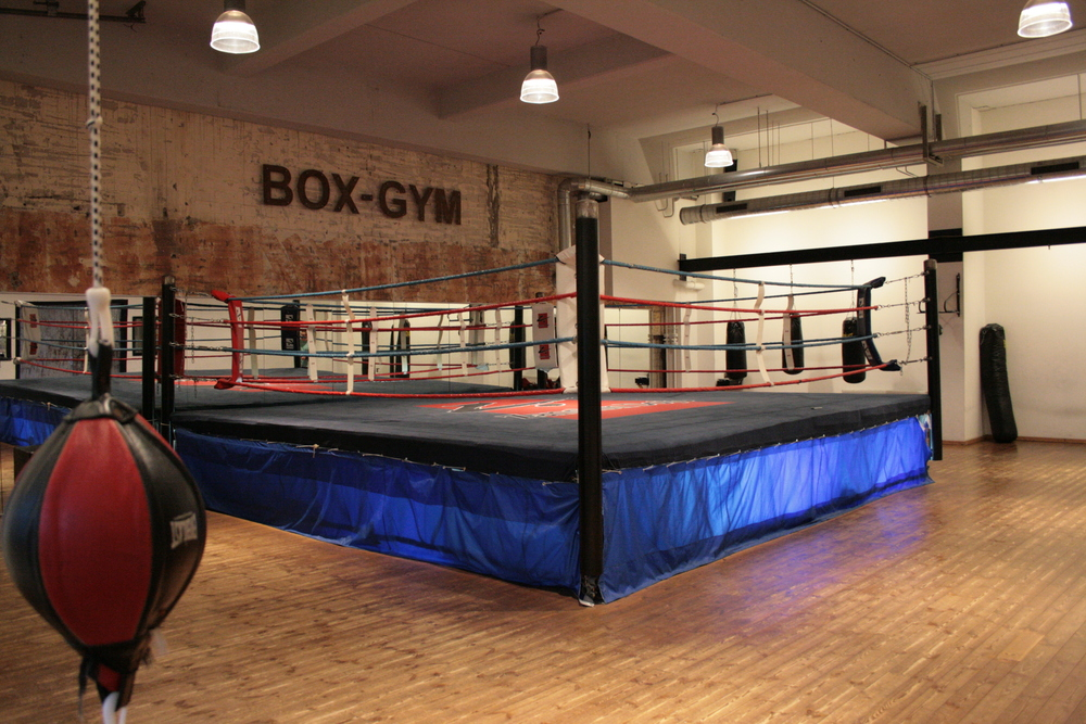 Zanshin-Dojo_box-gym