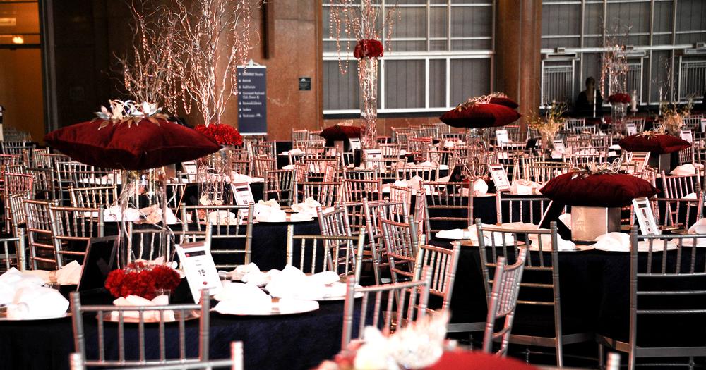 """""""Diana: a Celebration"""" Opening Gala (Cincinnati 2014)"""