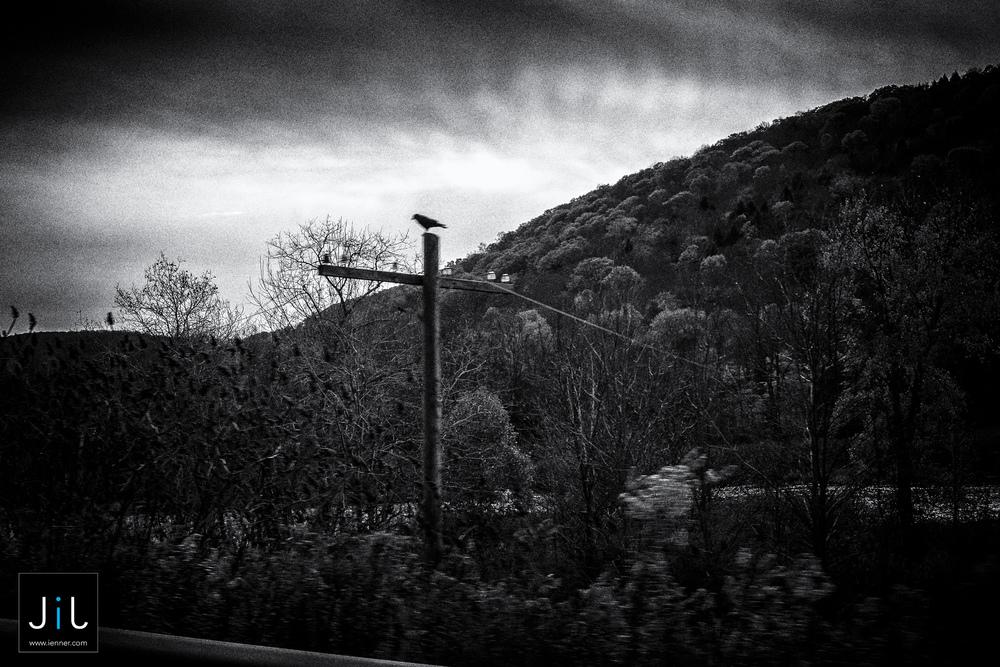 Trains - New York State