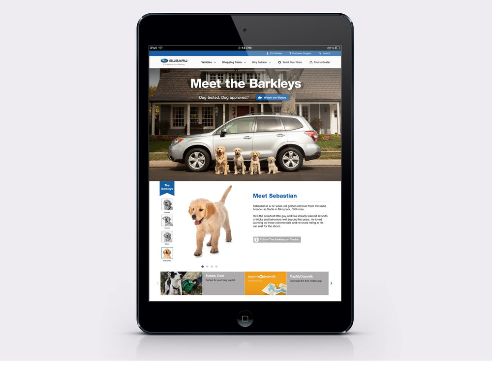 Mini-iPad.jpg