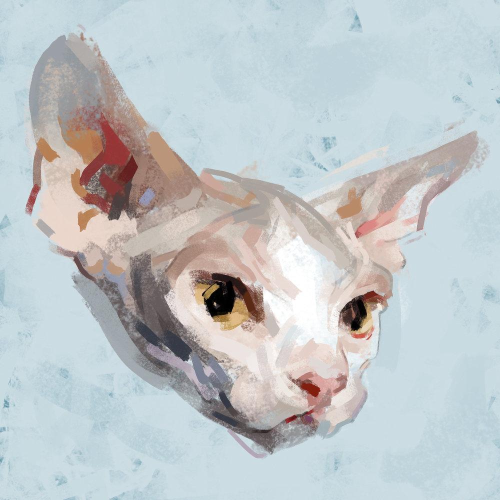 catheads2flatmorecloseup.jpg