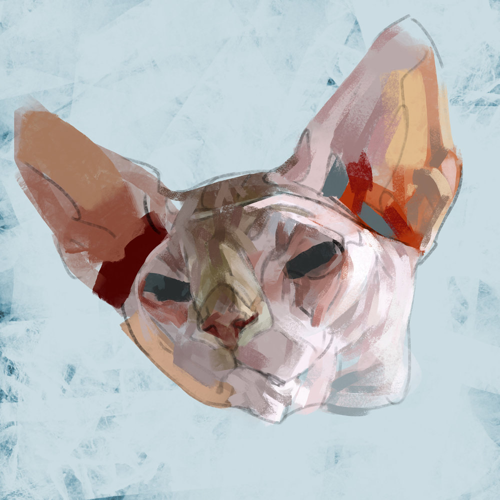 catheadsflat.jpg
