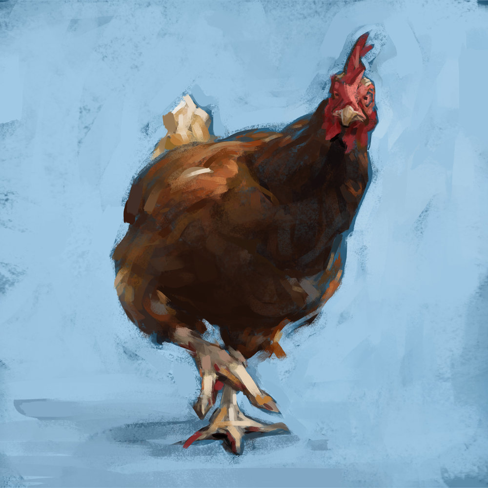 chicken2flatsquare.jpg