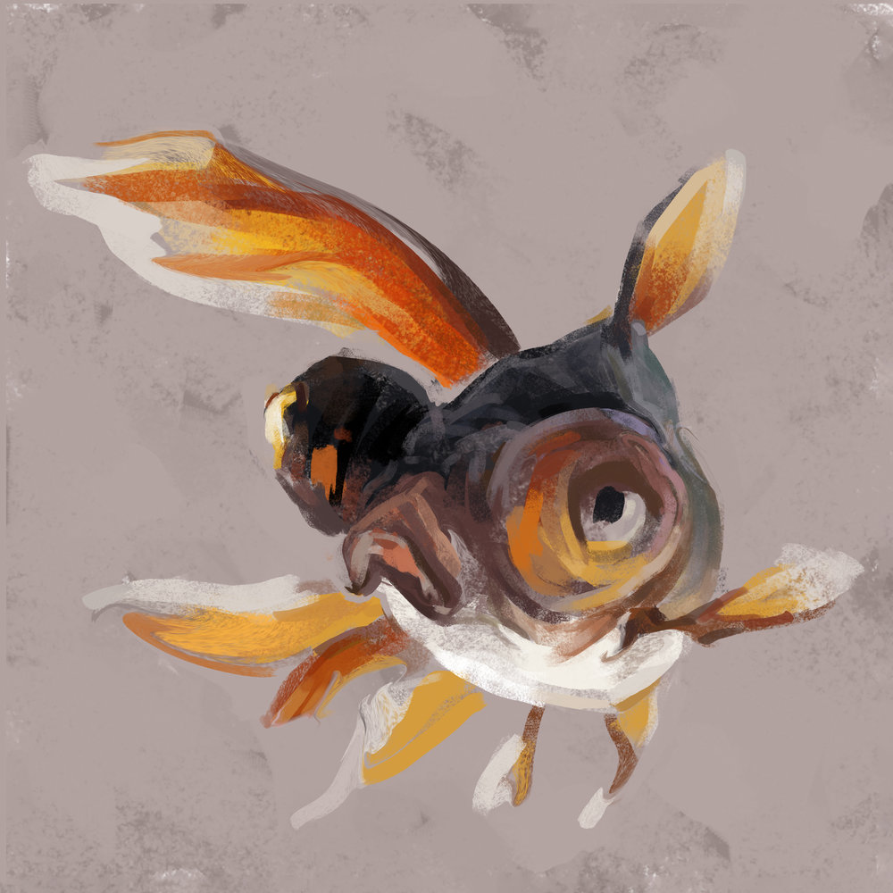 goldfish1-25finflat.jpg