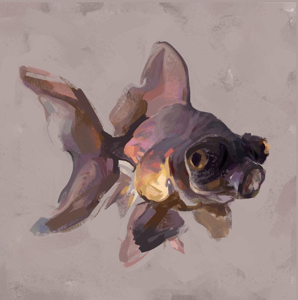 goldfish2-22flat.jpg