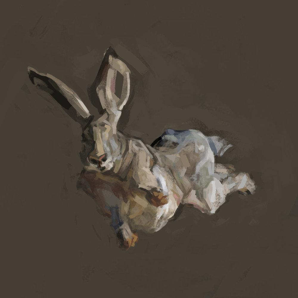 rabbit3flat.jpg