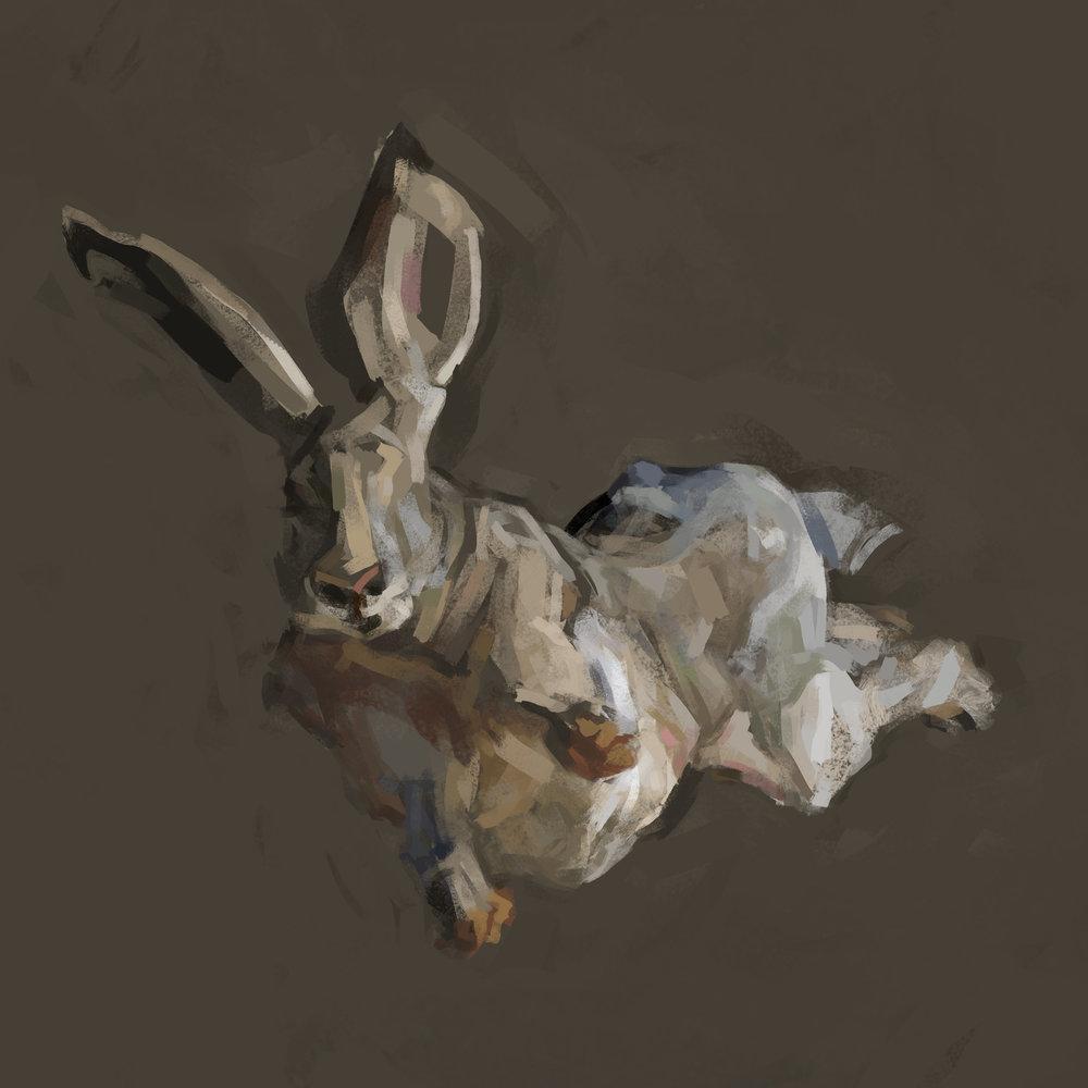 rabbit3flat2.jpg