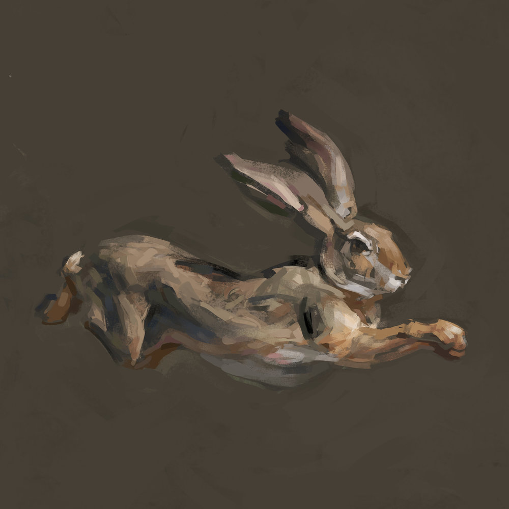 rabbit5flat.jpg