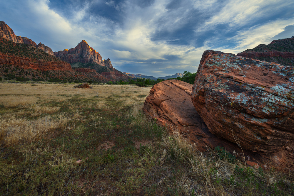 Watchman Meadow, Zion National Park, UT