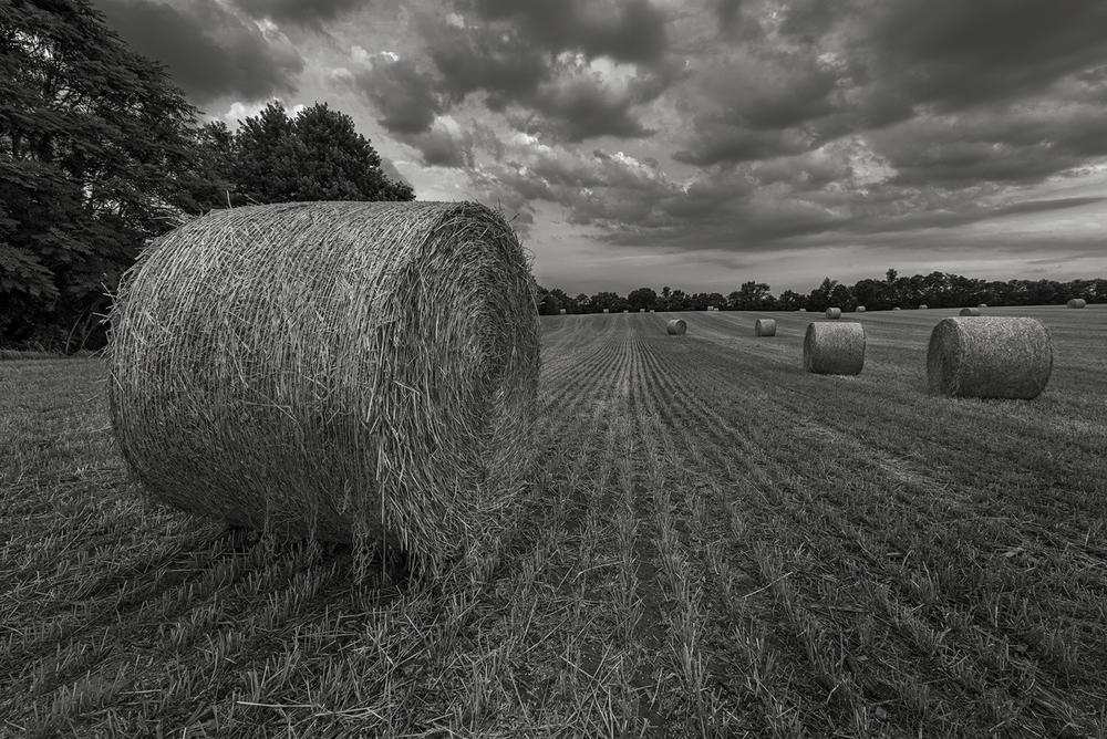 Receding storm clouds drift over a newly cut field of wheat near Shepherdstown, West Virginia.
