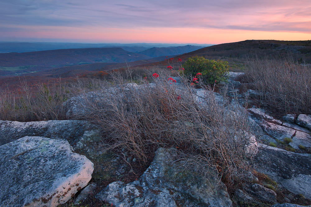 Twilight at Bear Rocks, Dolly Sods Wilderness, West Virginia