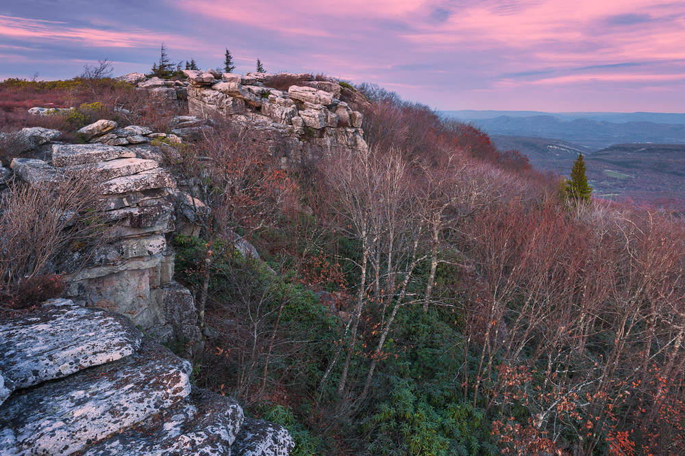Bear Rocks at Twilight • Dolly Sods Wilderness, West Virginia
