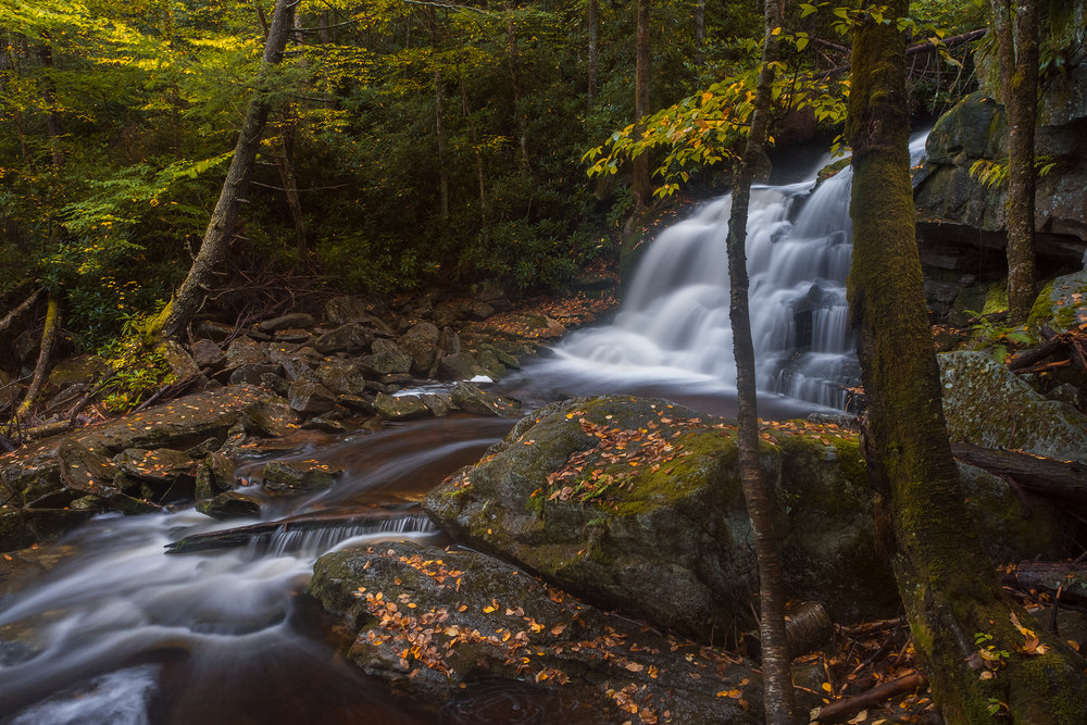 Fall at Elakala No. 2 • Black Water Falls State Park, WV