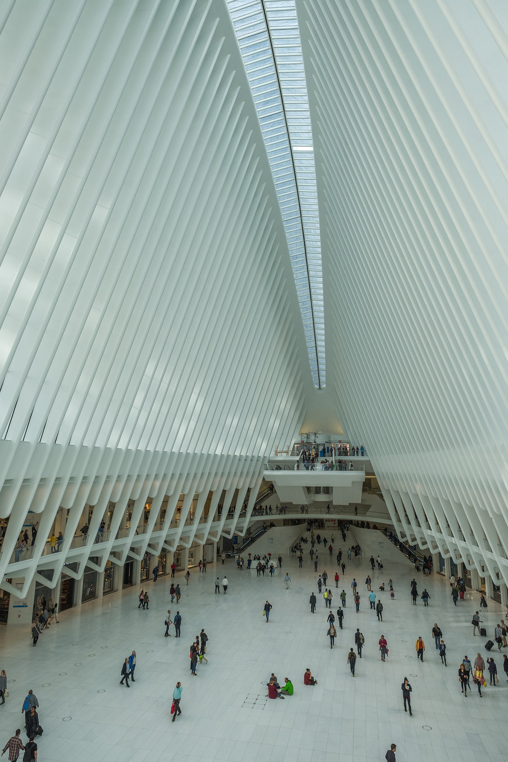 The Oculus at The World Trade Center.