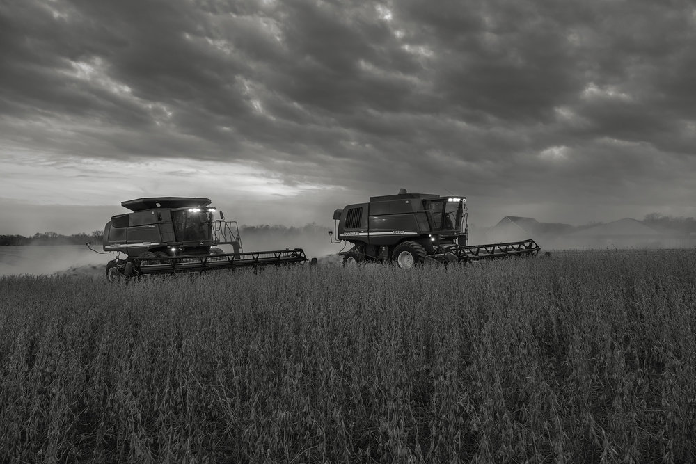Combines harvest soybeans under a deepening twilight sky. Fuji X-T2 and a Fujinon XF16-55mm f2.8 WR at 23mm. Image exposed at ISO 800 at f4 for 1/60 of a second.
