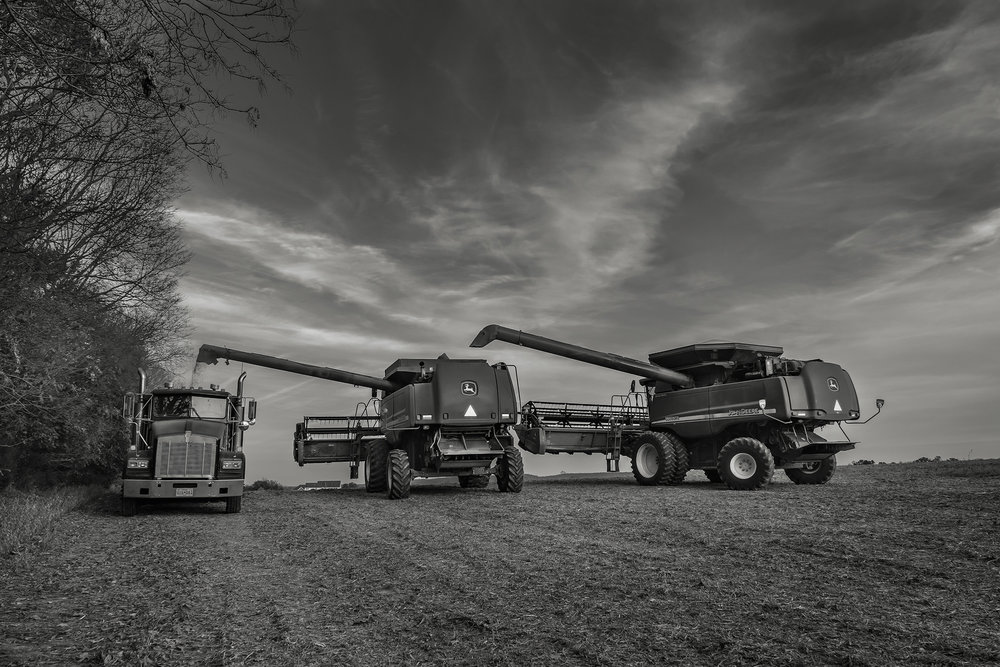Doubling up to unload the harvest. Fuji X-T2 and a Fujinon XF16-55mm f2.8 WR at 16mm. Image exposed at ISO 800 at f5.6 for 1/125 of a second.