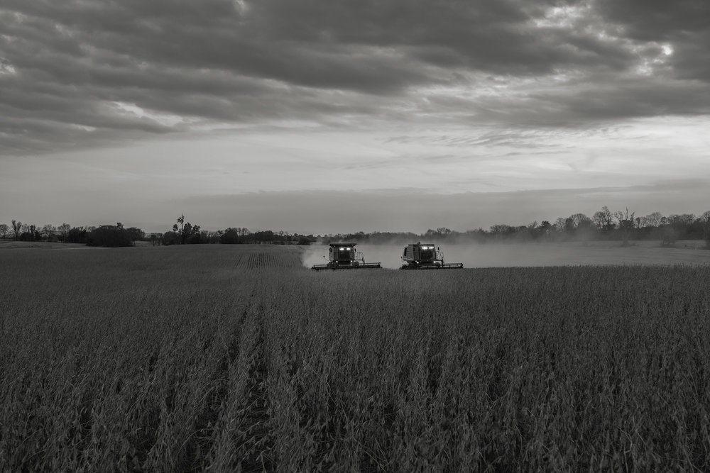 Dueling combines work under a darkening sky. Fuji X-T2 and a Fujinon XF16-55mm f2.8 WR at 55mm. Image exposed at ISO 800 at f4 for 1/60 of a second.