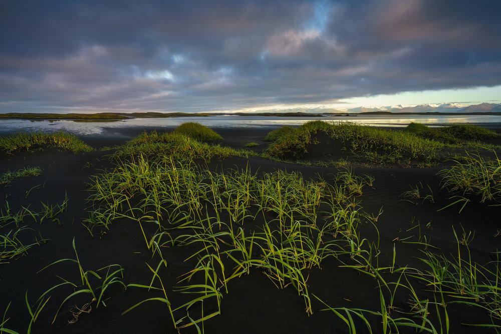 Tidal Flats at Vestrahorn