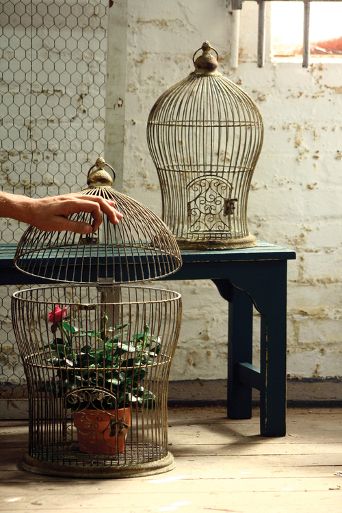 decorative bird cage plant or candle holder - Decorative Bird Cages