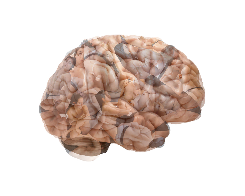 Body Brain