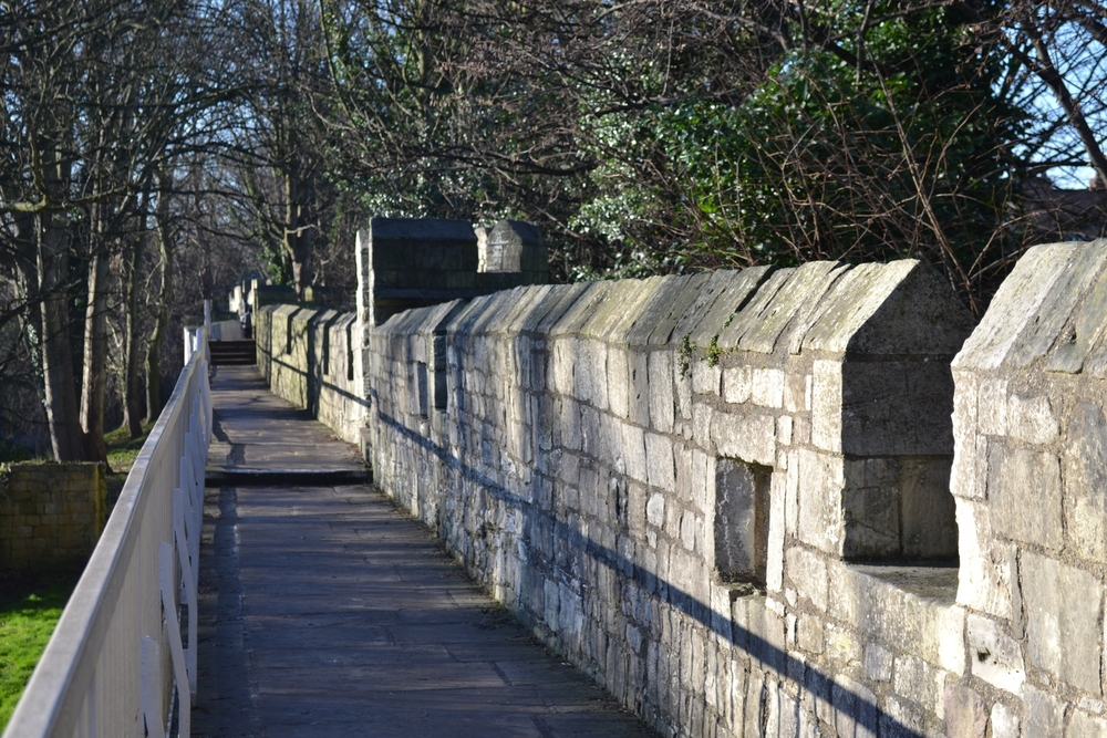 York City Wall. 2014