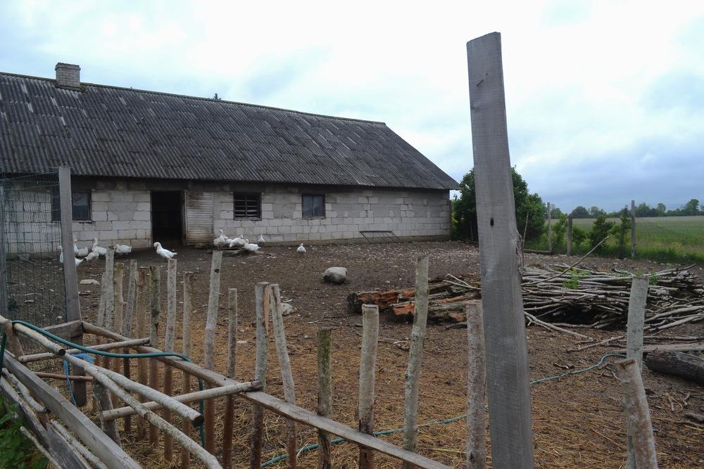 Island Farm, 2015