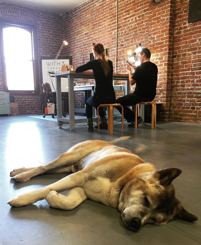 Erin and Darryl working hard on their rings. Their dog Axle napping hard on the studio floor.