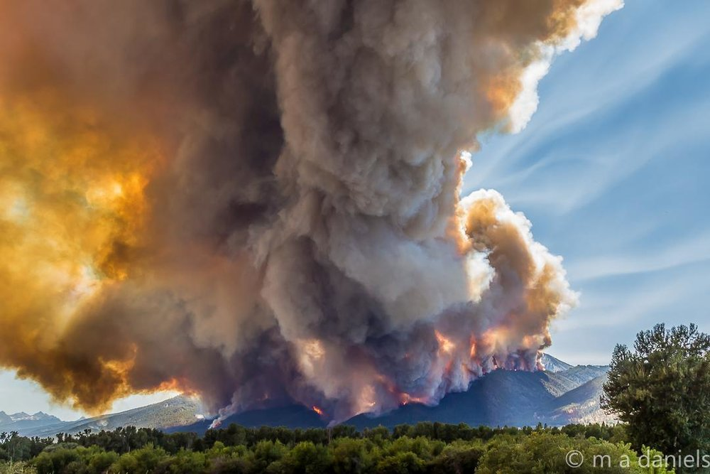 Montana's Roaring Lion Fire burned more than 8,500 acres in July and August of 2016. (InciWeb photo)