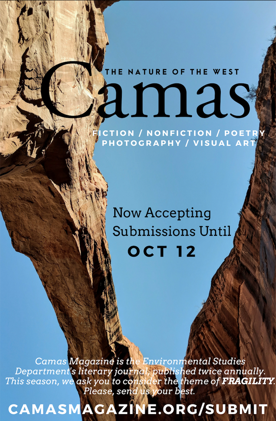 Submit Now to Our Winter 2018 Issue: Fragility — Camas Magazine