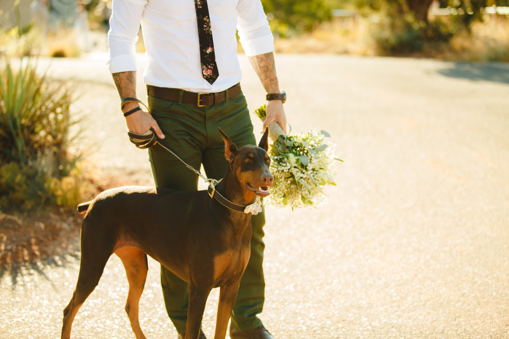 Outdoor weddings allow for all of our best friends to attend.