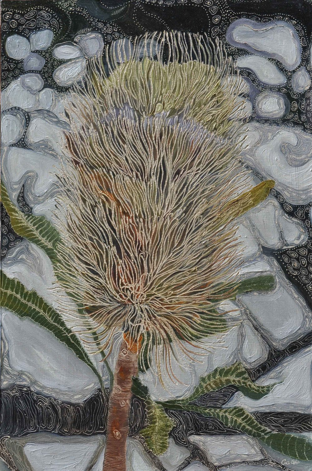 Title: Old Man Banksia- New World