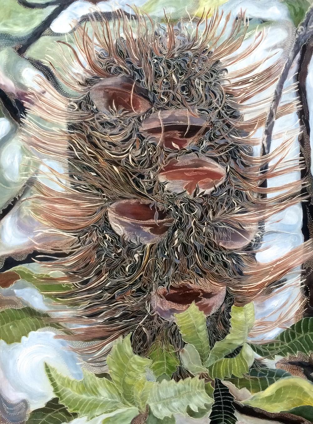 Homage to Old Man Banksia