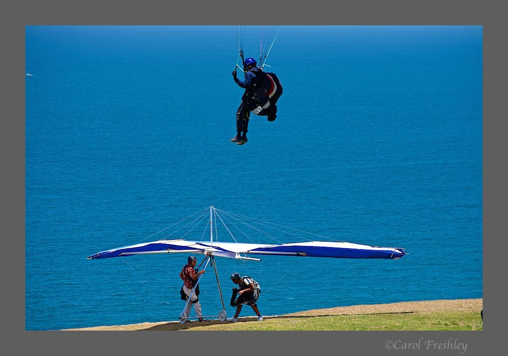 Torrey Pines Glideport 11.jpg