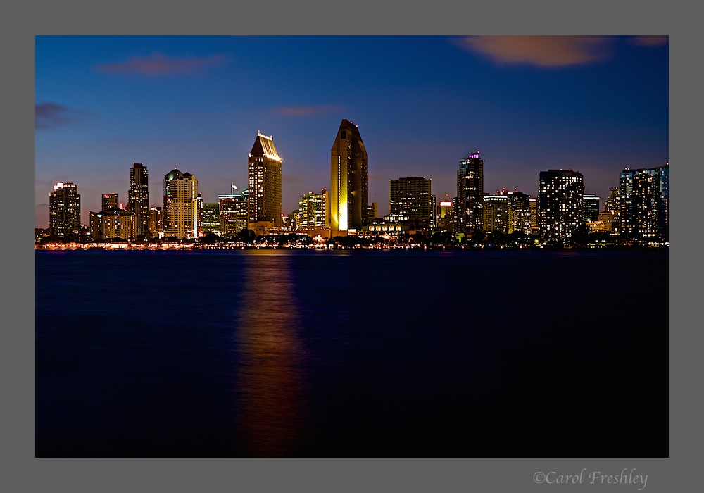 San Diego Skyline 18.jpg