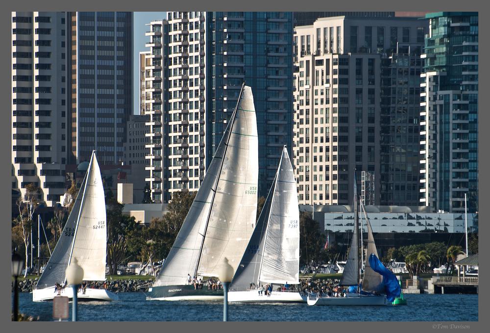 TD San Diego 1.jpg