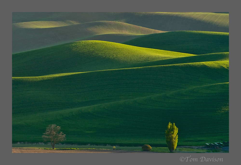 Day Three in Palouse 8.jpg