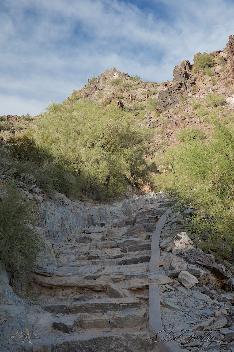 A few places on the trail have these uneven and sometimes loose rock steps. This is about the usual incline.