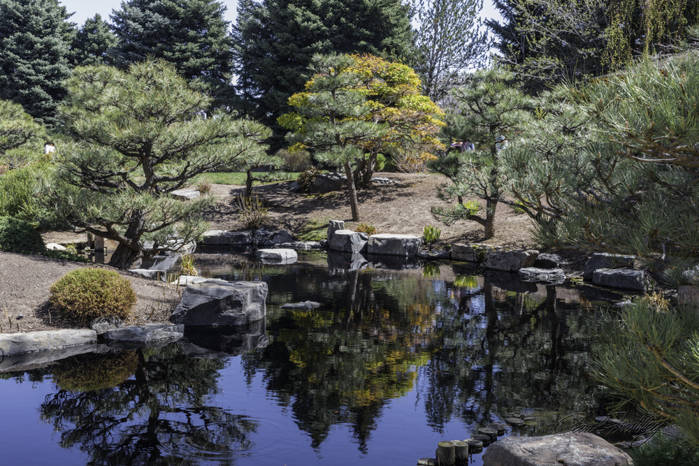 This is part of the Japanese Gardens.