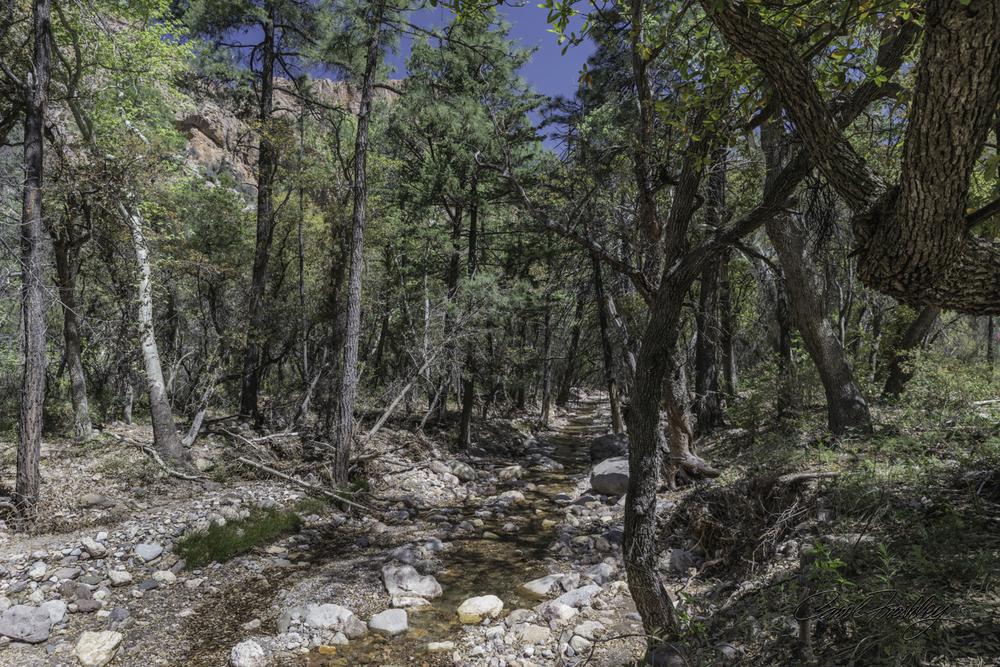 Cave Creek