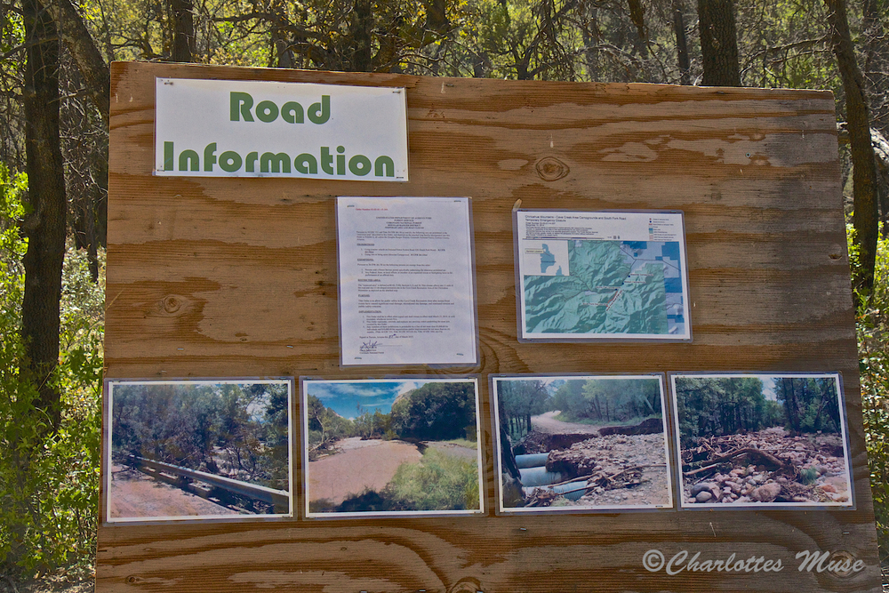 This board shows example of the devastation done by the flood a couple of years ago.  I have to walk South Fork to truly appreciate how powerful a flood coming down a stream bed can be.