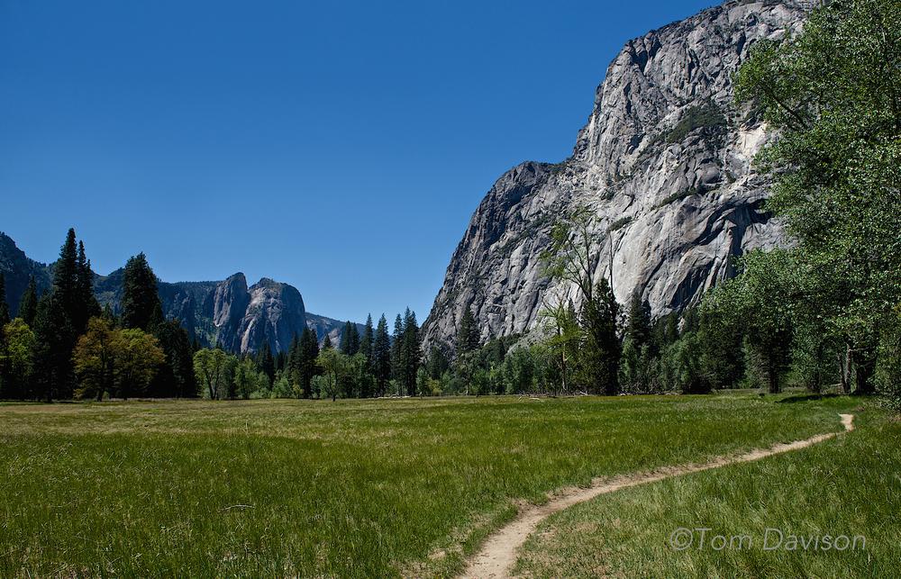 Grass and granite.