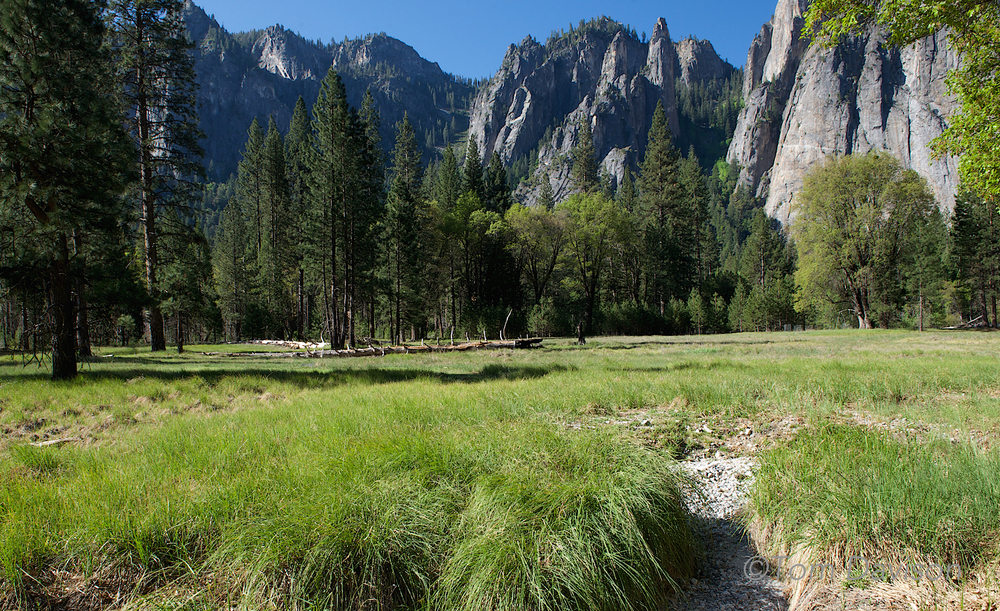 A meadow looking back at granite. I think this is looking towards Cathedral Rocks.