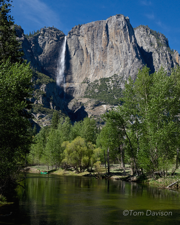 Upper Yosemite Falls from downriver along the Merced.