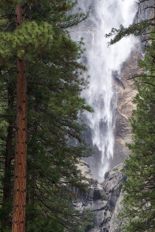 Lower Yosemite Falls.